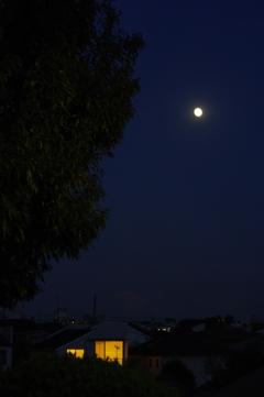 十三夜の夕べ