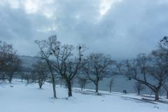 冬の静けさ