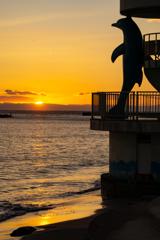イルカと見た夕日