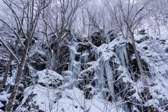 奥入瀬の氷瀑