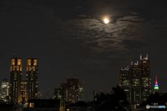 ライトアップと輝く月