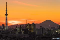 市川からの富士山