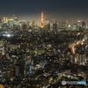 東京タワーの在る地上の光