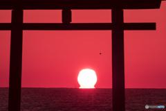 ダルマ太陽
