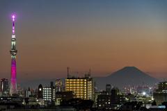 SDGsスカイツリー&富士山