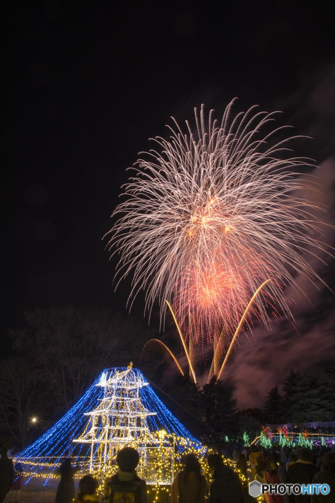 昭和記念公園 冬花火