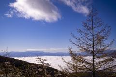 高峰高原より眼下の雲海を望む