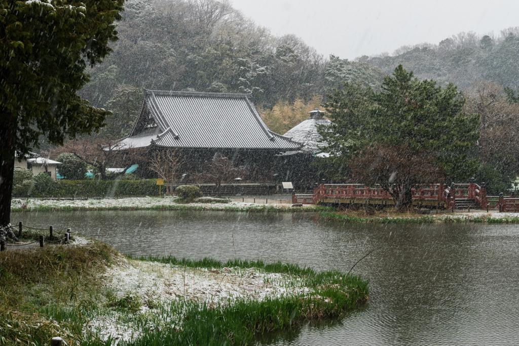 雪の日の称名寺