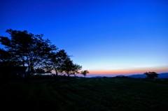 稲葉山牧場 ブルーモーメント