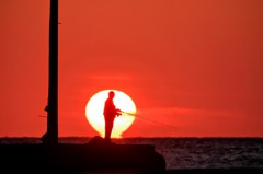 夕日の中で釣り