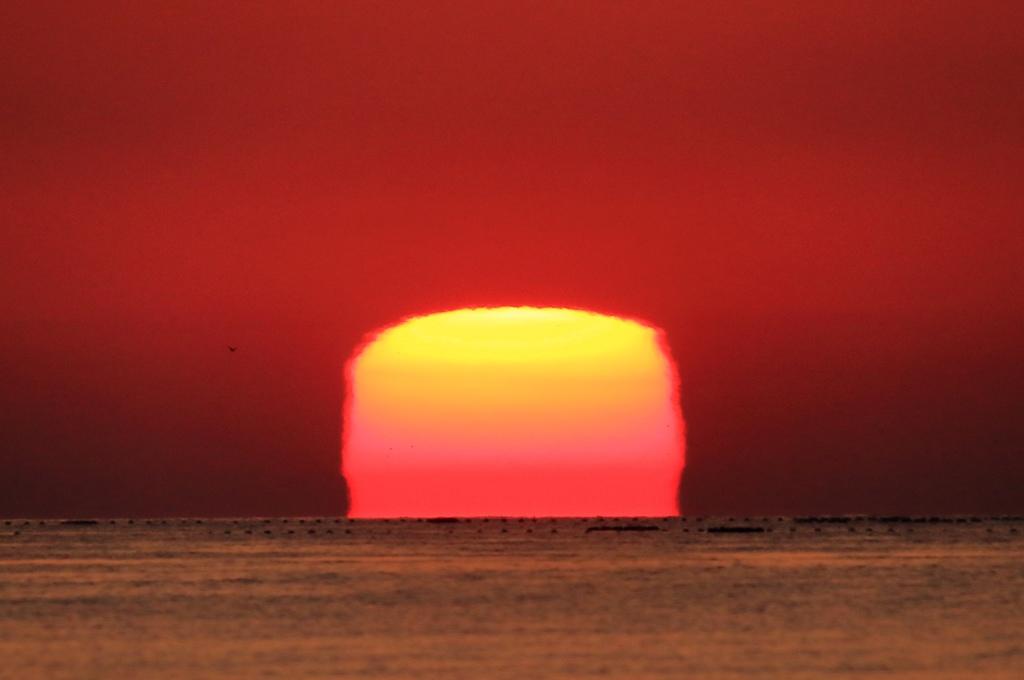 オレンジ色の四角い太陽