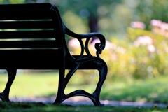 植物園のベンチ