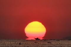 雨晴海岸のダルマ太陽