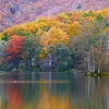 秋の曽原湖 2