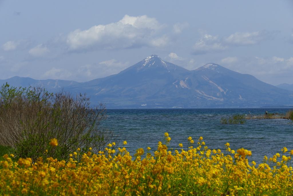 菜の花、猪苗代湖、そして磐梯山