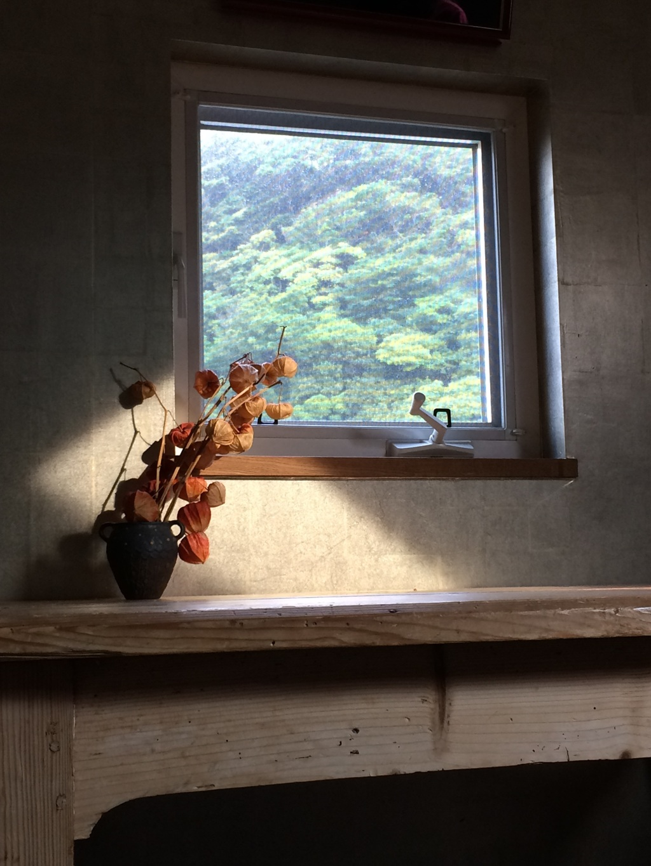 窓にうつる絵画