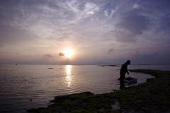 沖縄竹富島にて 海藻取りをするおじいと夕日