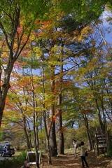 日光霜降りの滝への道1‐0910