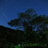 夜空の星と地上の星のコラボ(静かなバージョン)