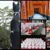 仕事で京都 組写真1