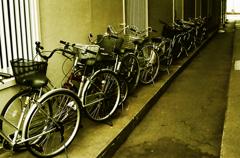 自転車小路