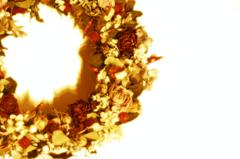 花の環 II