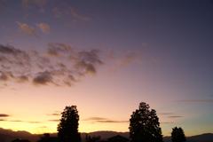 淡色dawn