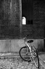 壁際自転車