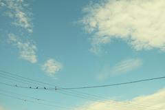 今日の空 2009.08.23
