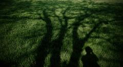 緑の自意識