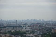大阪市方面の見晴らし