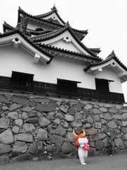 彦根城といえば…