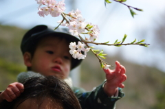 父の背中から春を見た。