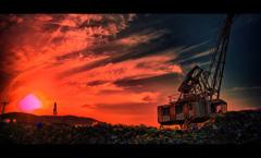 瓦礫の楽園