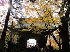 榛名神社(2)