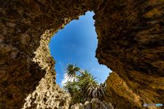 洞窟の底から