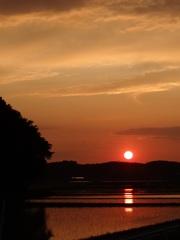 夕日と夕焼け