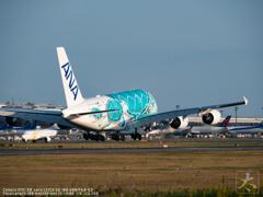 The FLYING HONU is landing