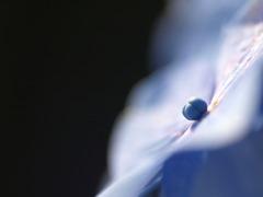 ソンブレロ星雲