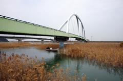 歩道橋と葦原