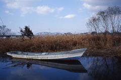枯れ葦原と白い小舟