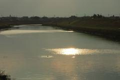 鯉の跳ねる川
