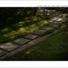 京都   秋の旅路  15