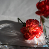 テーブルの花2