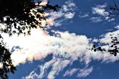 彩雲が走る
