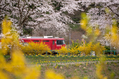 春の景色を通り抜けて