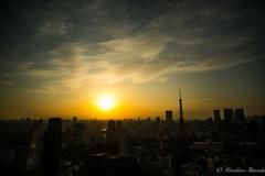 ☆東京の夕景☆