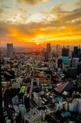 東京タワー大展望台からの夕陽