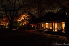 秋夜の寛ぎ