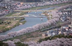 春色の景色